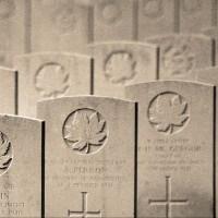 Miltary Graves