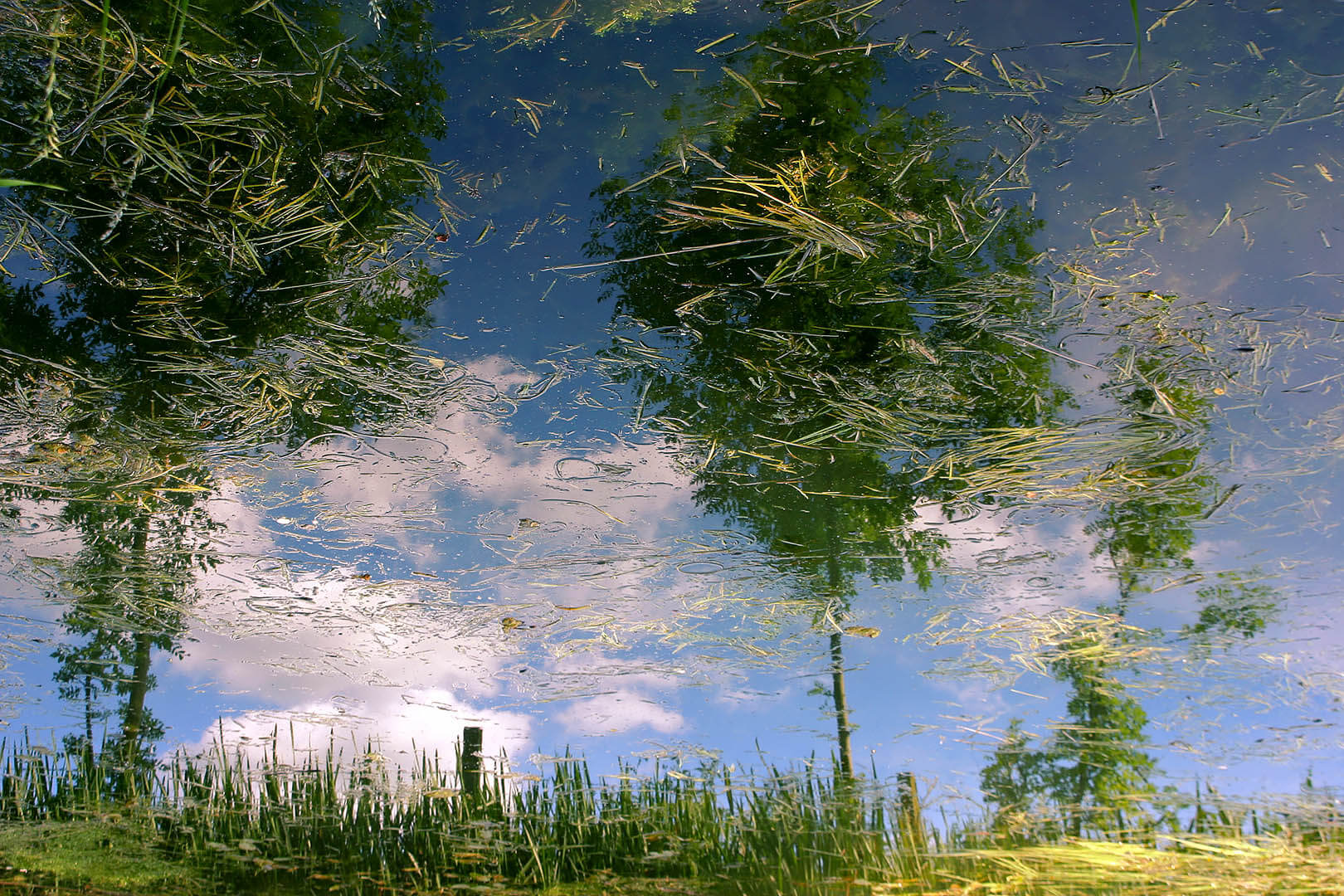 Canal Reflections 01