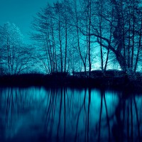 River Bank at Night