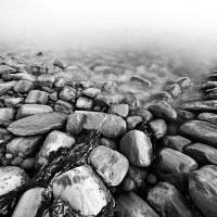 Kimmeridge Stones